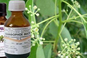 Применение камфорного масла для лечения
