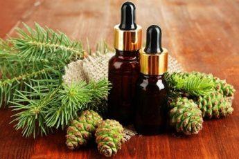 Лечебные свойства пихтового масла и применение