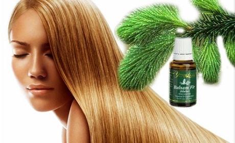 Лечебные свойства пихты для волос