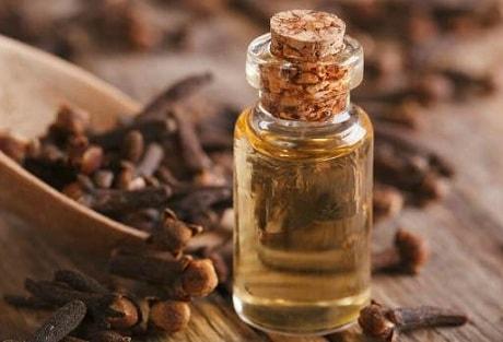 Применение эфирного масла гвоздики