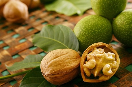 Грецкий орех при сахарном диабете