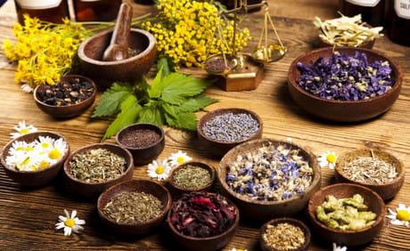 Травы для лечения псориаза