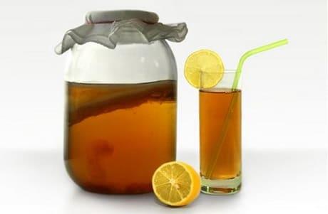 Чем полезен чайный гриб