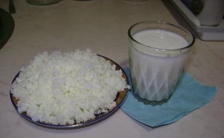 Как употреблять молочный кефирный грибок