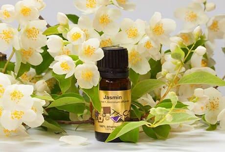 Полезные свойства масла жасмина