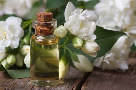Свойства и применение масла жасмина