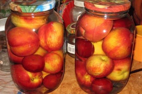 Полезный компот из персиков